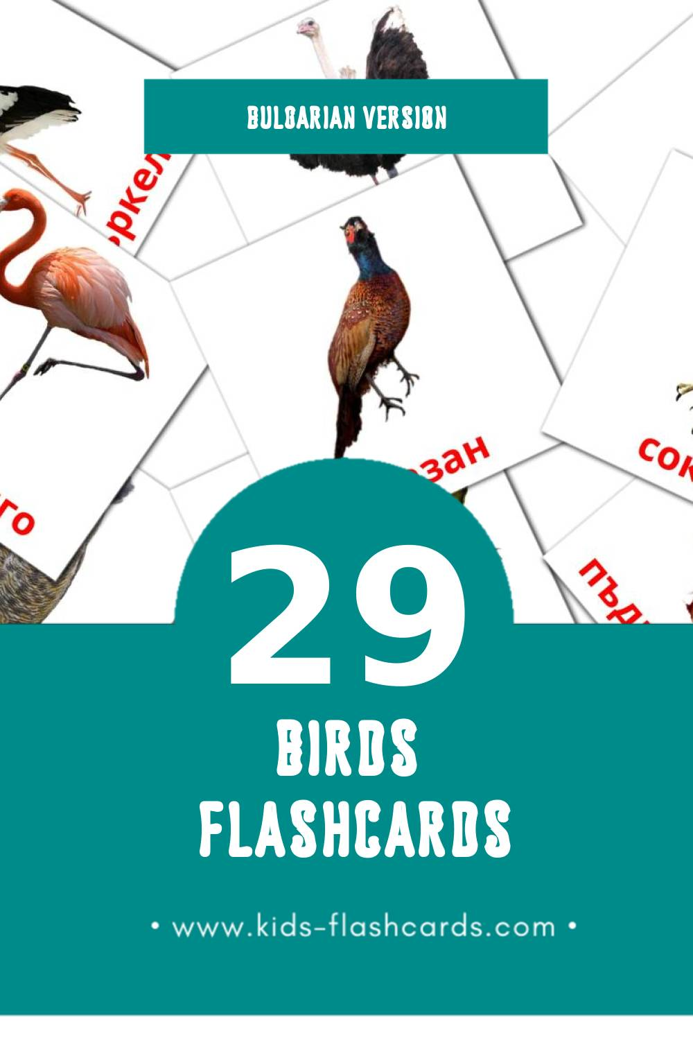 Visual Птици Flashcards for Toddlers (29 cards in Bulgarian)