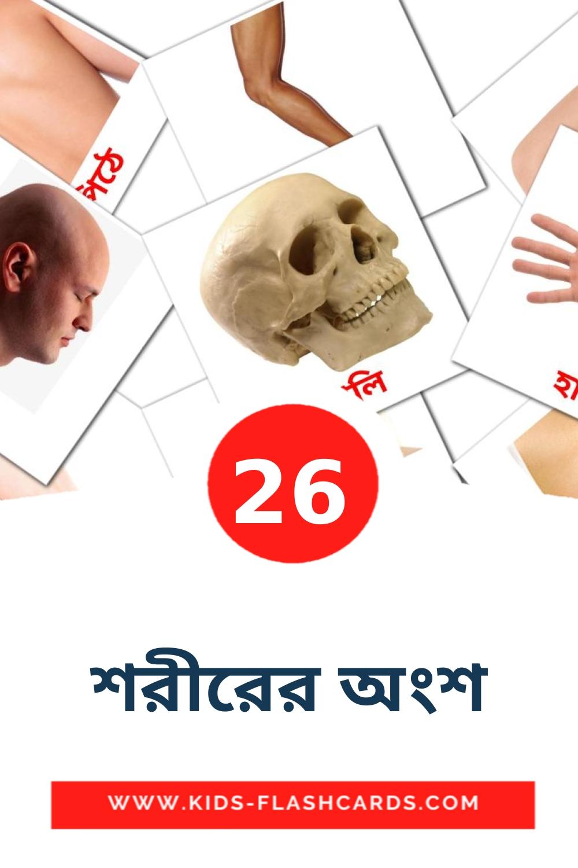 26 শরীরের অংশ Picture Cards for Kindergarden in bengali