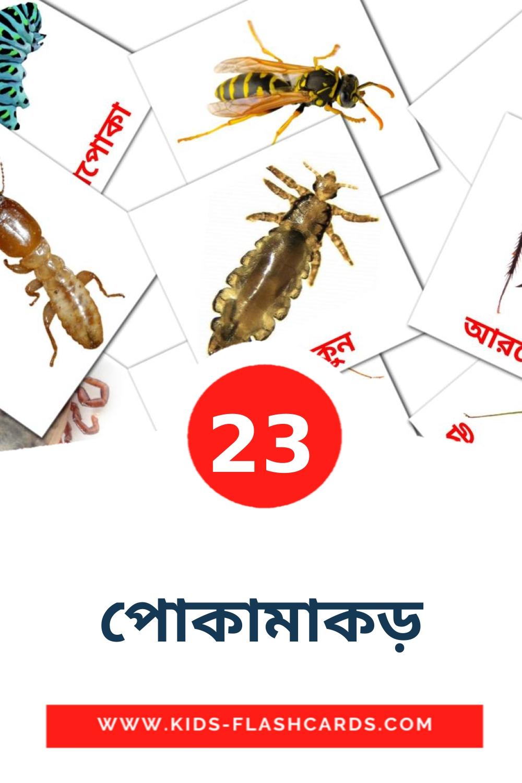 23 পোকামাকড় Picture Cards for Kindergarden in bengali