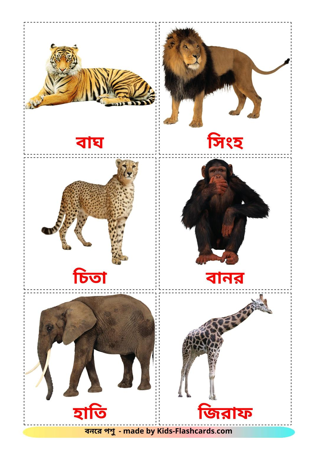 Jungle animals - 21 Free Printable bengali Flashcards