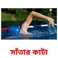 সাঁতার কাটা picture flashcards