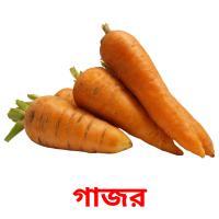 গাজর picture flashcards
