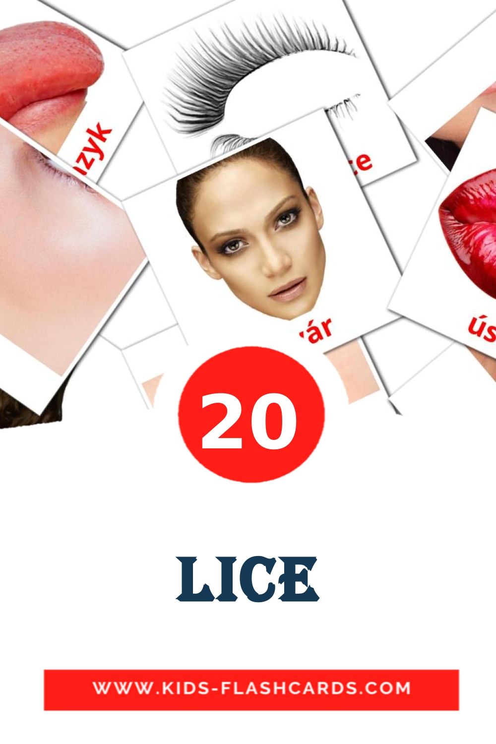 20 Lice Picture Cards for Kindergarden in bosnian