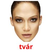 tvár picture flashcards