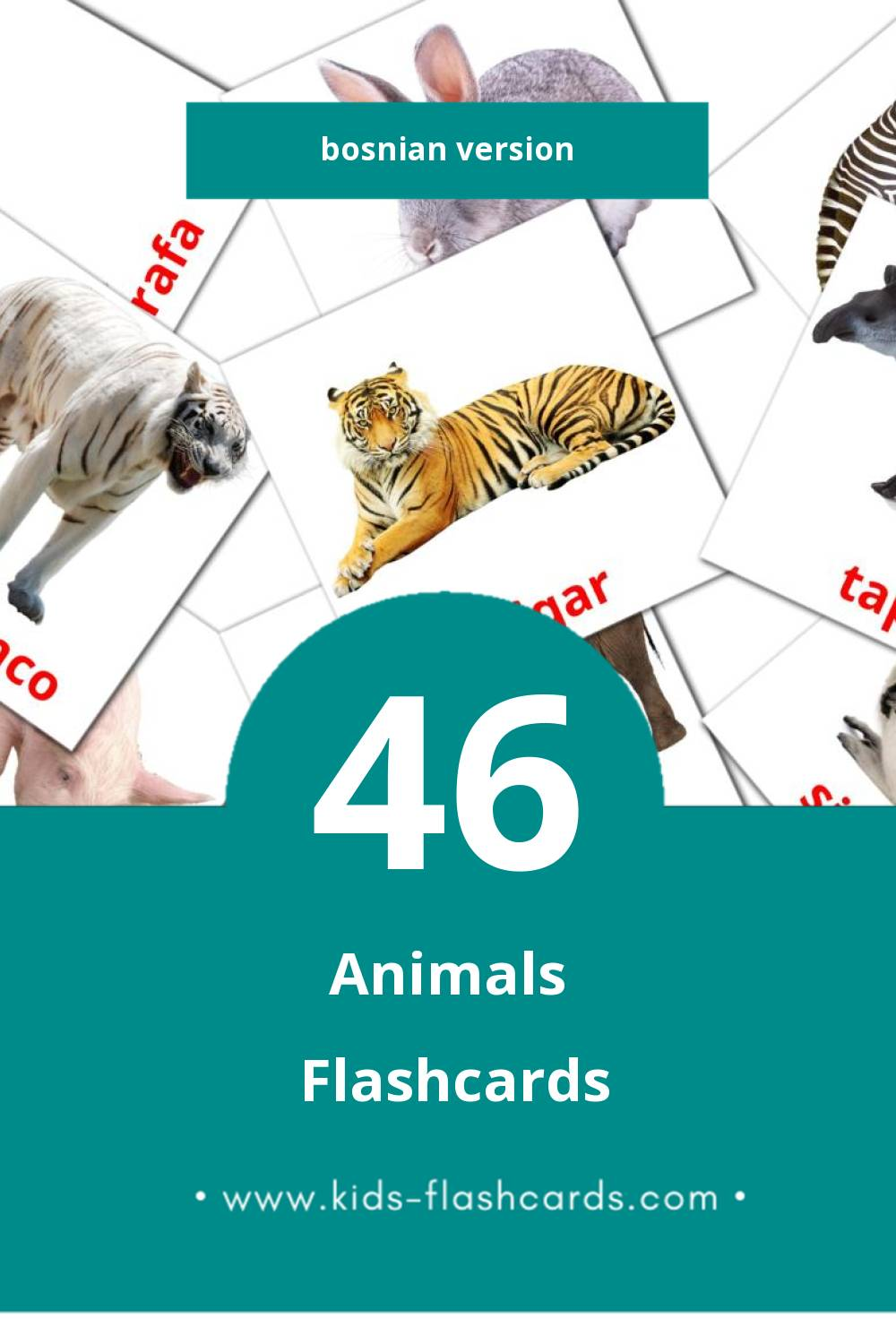 Visual životinje Flashcards for Toddlers (25 cards in Bosnian)
