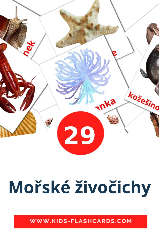 29 Mořské živočichy Picture Cards for Kindergarden in czech