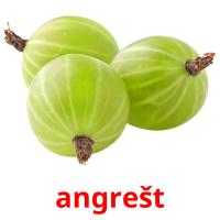 angrešt picture flashcards