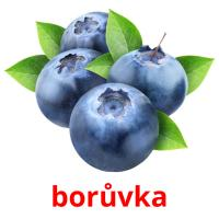borůvka picture flashcards