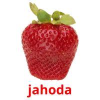 jahoda picture flashcards