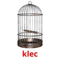 klec picture flashcards