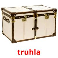 truhla picture flashcards