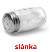slánka picture flashcards