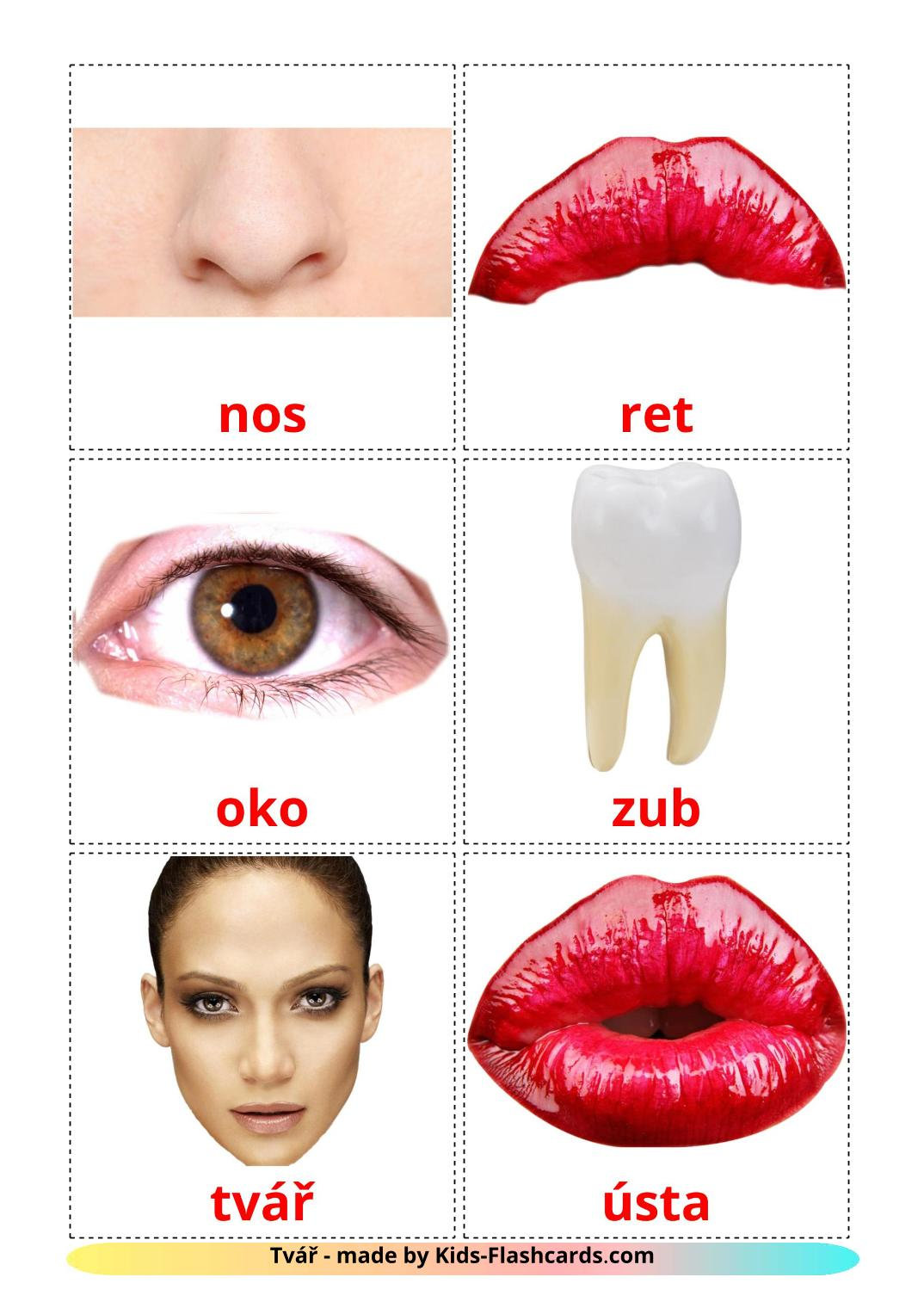 Face - 20 Free Printable czech Flashcards