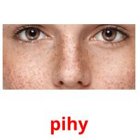 pihy picture flashcards