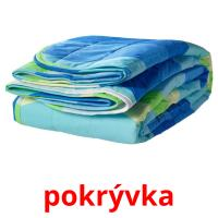 pokrývka picture flashcards