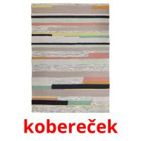 kobereček picture flashcards