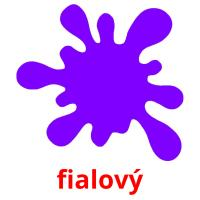fialový picture flashcards