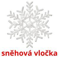 sněhová vločka picture flashcards