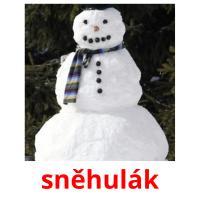 sněhulák picture flashcards