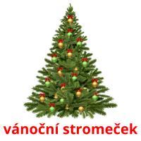 vánoční stromeček picture flashcards