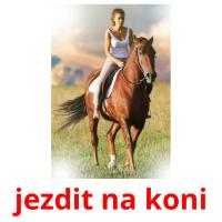 jezdit na koni picture flashcards