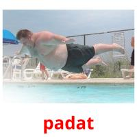 padat picture flashcards