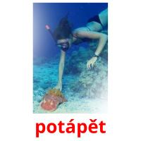 potápět picture flashcards