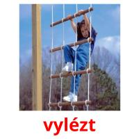 vylézt picture flashcards