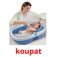koupat picture flashcards