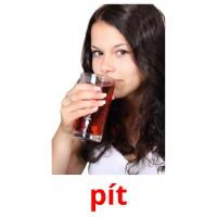 pít picture flashcards