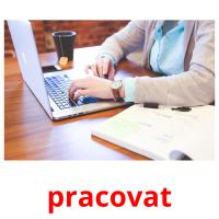 pracovat picture flashcards
