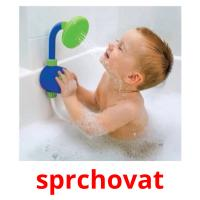 sprchovat picture flashcards