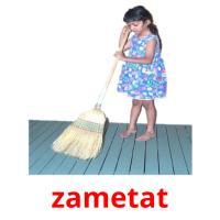 zametat picture flashcards