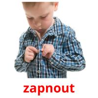 zapnout picture flashcards