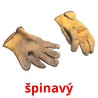 špinavý picture flashcards