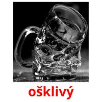 ošklivý picture flashcards
