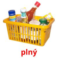 plný picture flashcards