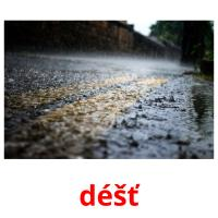 déšť picture flashcards
