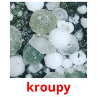 kroupy picture flashcards