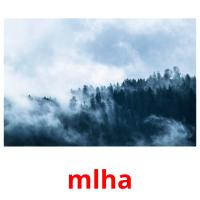 mlha picture flashcards