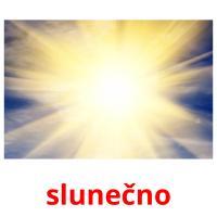 slunečno picture flashcards