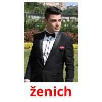 ženich picture flashcards