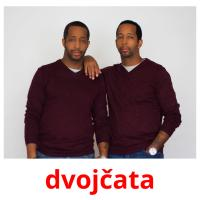 dvojčata picture flashcards