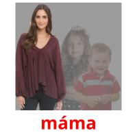 máma picture flashcards