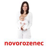 novorozenec picture flashcards