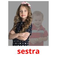 sestra picture flashcards