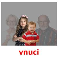vnuci picture flashcards