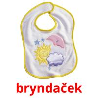 bryndaček picture flashcards