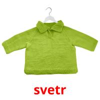 svetr picture flashcards
