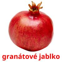 granátové jablko picture flashcards